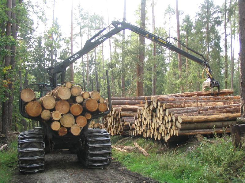rundholz_rueckemaschine1
